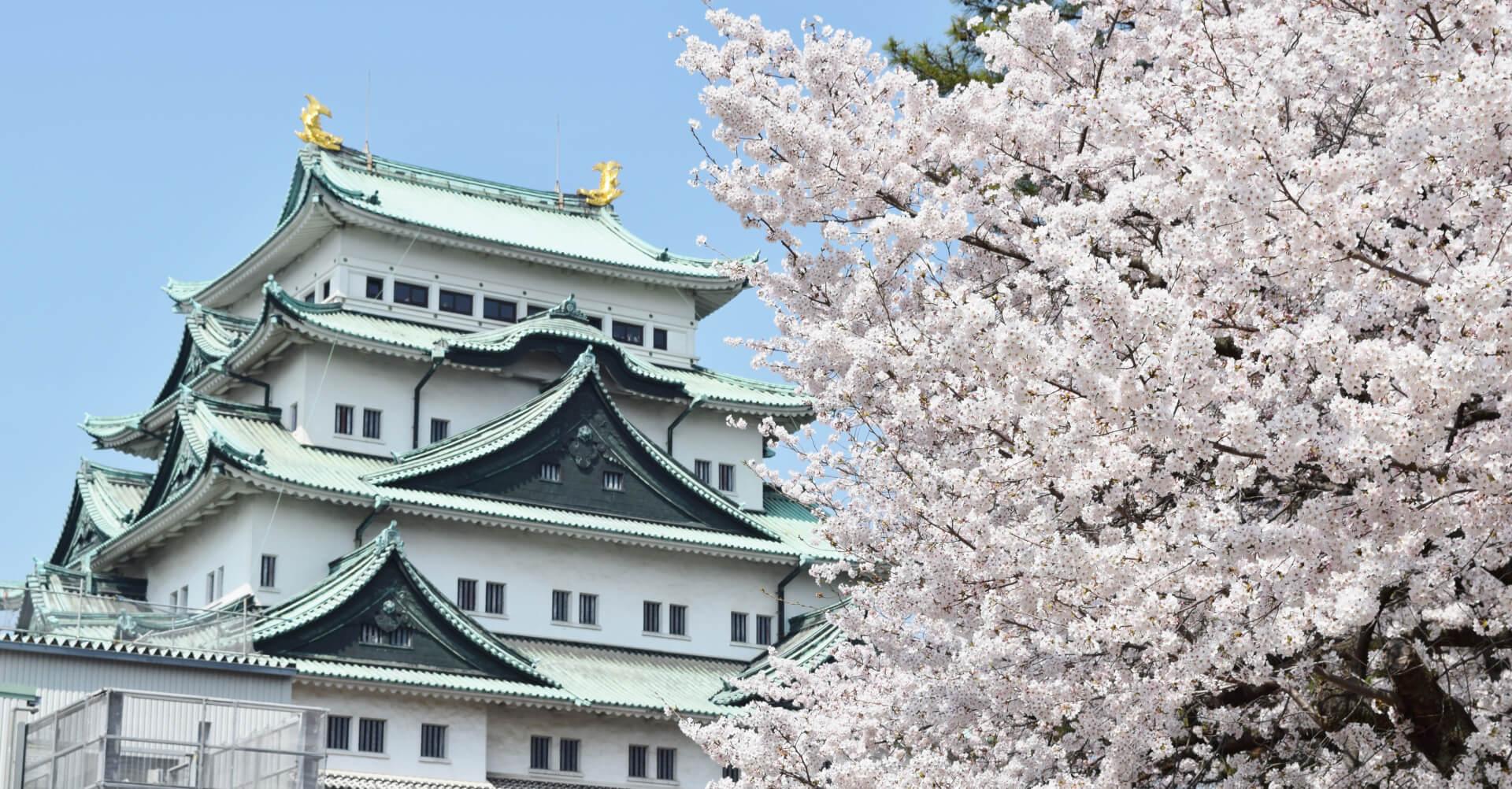 愛知県のゲストハウスまとめ!一度は行きたいおすすめの宿!